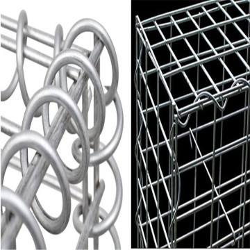 Double Twist Dilas Gabion Wire Mesh