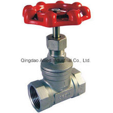 Screwed End Globe Valve for Pipe Line