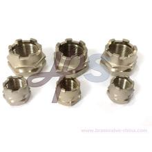 Inserindo a inserção masculina ou fêmea de bronze de PPR para a tubulação do plástico de PPR