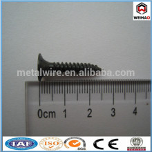 Daywall Screw
