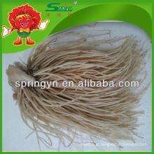 2015 Raiz de alho-porro fresco chinês