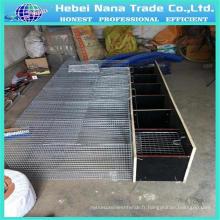 Fabricant professionnel de cage métallique Mink