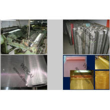 Stainless Steel Wire Mesh/Woven Mesh