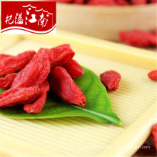 Wholesale common goji berry