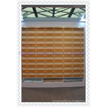Persianas de persianas enrollables de cebra (SGD-R-3069)