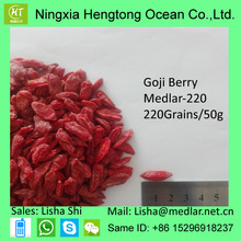 Antioxydants Longevity Superfood Goji Berry