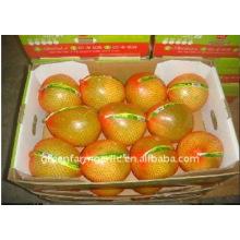 Honey Pomelo in China
