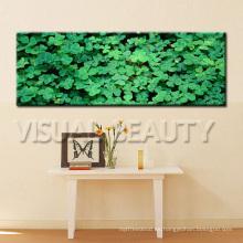 Impresión panorámica de la imagen de la flora en lona con estirado listo para colgar en la pared