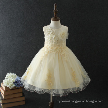 Best selling baby girls party dress design children's princess flower wedding dress for 10 years old Best selling baby girls party dress design children's princess flower wedding dress for 10 years old