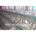 China manufacturers produce customized duck breeding equipment