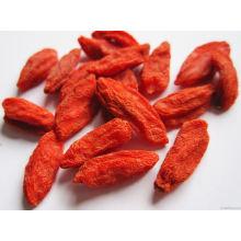 Low-Pesticide Goji Berry de origen de China (160/220/350)