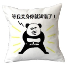 Chinese style panda bear sofa cushions