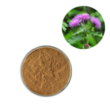 High Quality Pure Natural Silimarin Powder Form Milk Thistle Dry Extract Powder