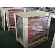 Sistema de generador diesel fuerte del embalaje (5KW)