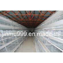 una jaula de pollos de tipo automático para granja de aves de corral