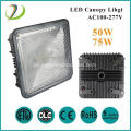 AC00-277V LED Canopy Light