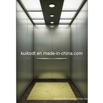 Escalade résidentielle Ascenseur avec gravure à cheveux en acier inoxydable (KJX-DJ04)