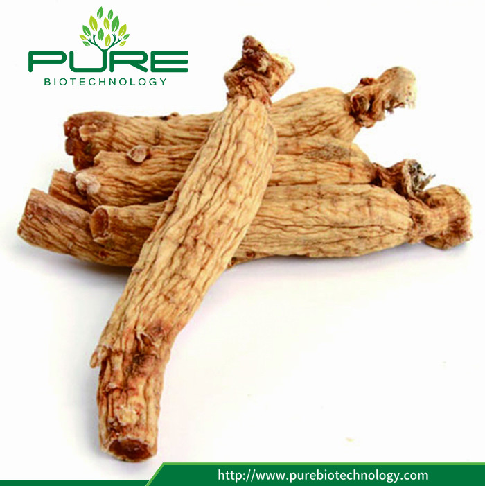 Natural Dried Red Panax Ginseng Root (3)