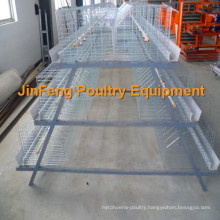 Cheap Automatic Poultry Equipment Broiler Chciken Cage Frame for Farm Use