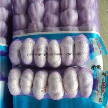 Китайский Новый Урожай Фиолетовый Чеснок Цвета