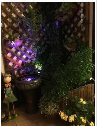 Solar Garden Pond Lighting