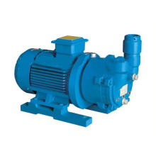 Water Ring Vacuum Pump (SZ)