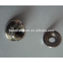 DIN6923 Aço Inoxidável Hex Flange Nut