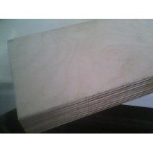 Birken- und Backfurnier-Sperrholz