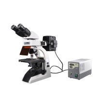 Bestscope BS-2072fb Fluorescent Biological Microscope