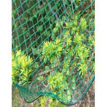 Excelente qualidade de proteção novo pe contra rede de aves