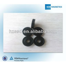 Bonded Rare Earth Magnet