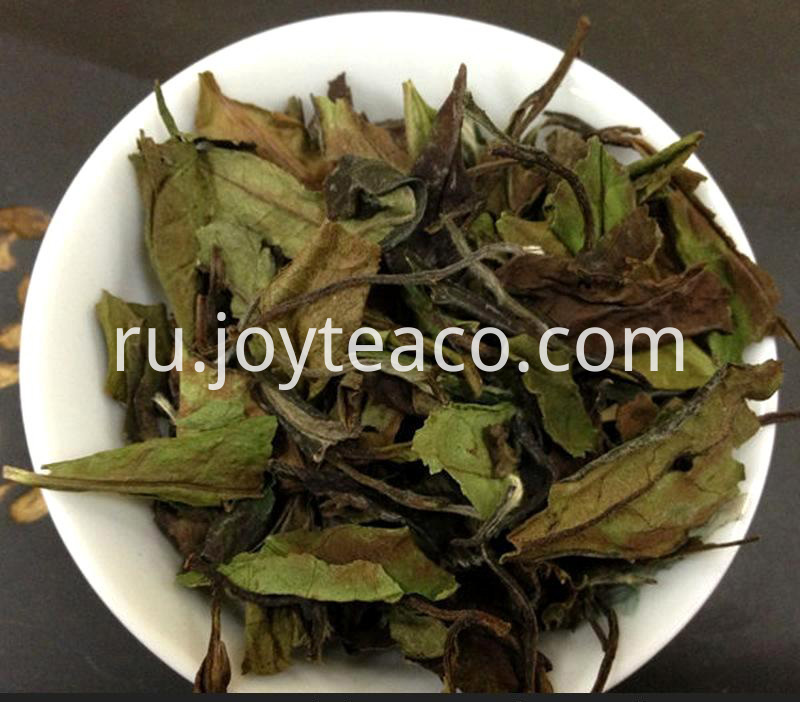 White Tea Shou Mei
