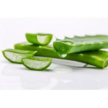 Aloe vera CAS 85507-69-3