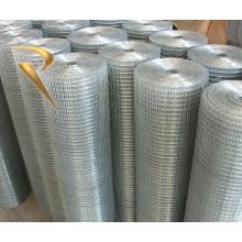 China fabricante Galvanizado painel de malha de arame soldado ou rolo, Fio Soldado revestido de PVC