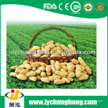 Shandong origin peanuts in shell 30kg/bag for sale with lowest price