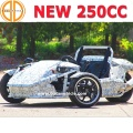 Bode Quality Assured Ztr Trike Roadster 250cc for Sale Bc