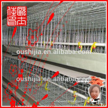 chicken poultry layer cage(manufactory)