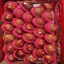 Gute Qualität Ausgewählte frische Äpfel