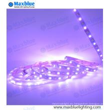 SMD5050 RGBW cuatro en una luz de tira flexible del LED