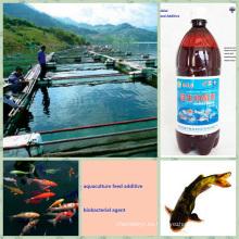 Bio Preparate Organic for Feed Aditivo Promueve el crecimiento de la acuicultura