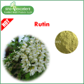 Vitamin P powder 95% from natural plant