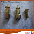 Customized Hardware Pofiled Special Bolt T Head Bolt