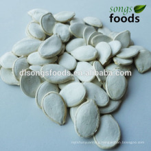 Snow White Pumpkin Seeds In Shell