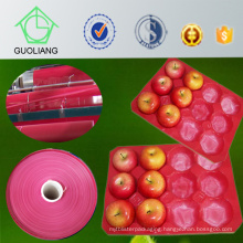29X39cm Walmarket Use Polypropylene Fruit Display Container for Fresh Apple Packaging with FDA, SGS Certificate