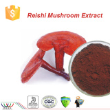 Pure natural improving immunity ganoderma/reishi mushroom extract