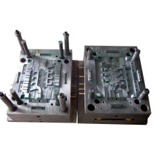 Professional Injection Moulding /Prototype / Plastic Mould in China (LW-03665)
