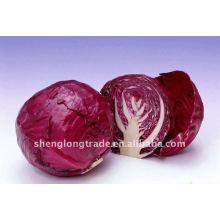 Свежие фиолетовая капуста овощ
