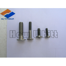high end Ti6AI4V titanium cup head screws and bolts