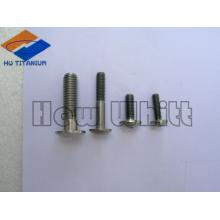 parafusos e parafusos de cabeça de copo de titânio Ti6AI4V high-end