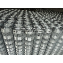 Galvanized Welded Wire Mesh From China Supplier, Low Price Galvanized Hexagonal Wire Mesh, Welded Wire Mesh for Sale